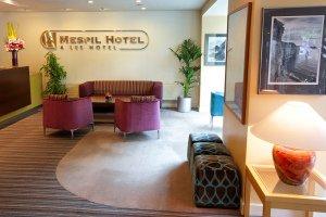 Mespil Hotel Reception Photograph.